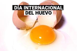 Día mundial del huevo: Beneficios de este nutritivo alimento