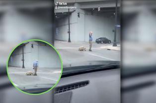 Abuelito pasea a su tortuga y camina al mismo paso que ella por las calles