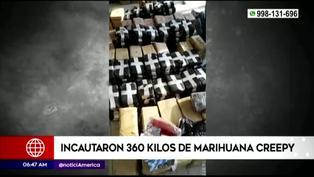 PNP incauta 360 kilos de marihuana en Piura