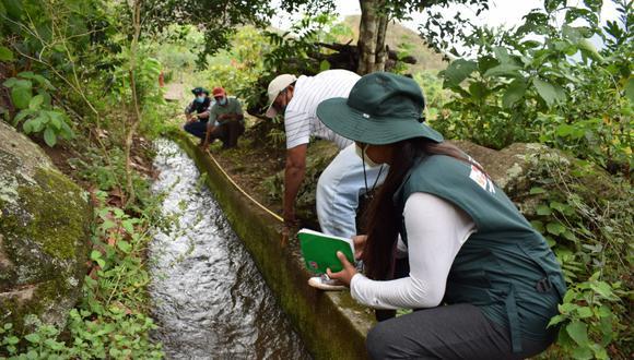 Se ha programado realizar 240 actividades con un presupuesto de S/ 1,049, 500 en la región. (Minagri)