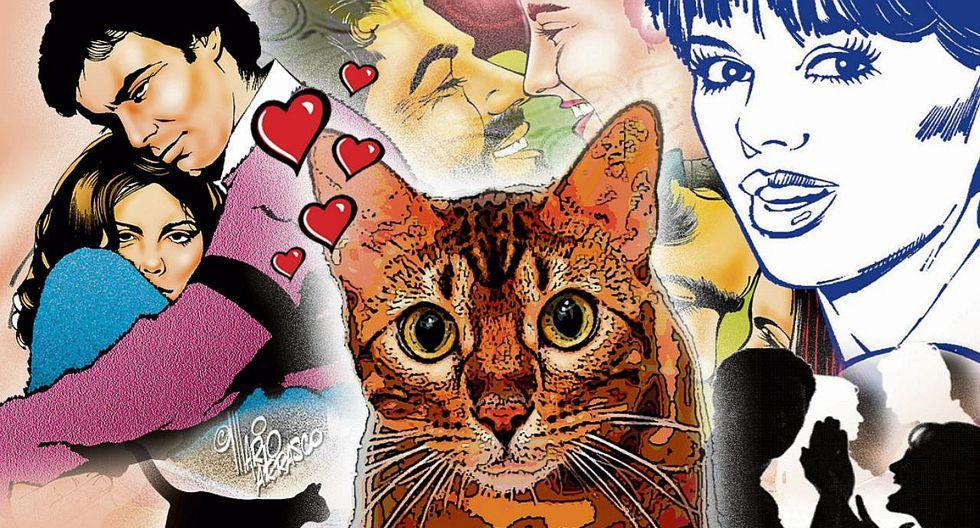 """Peleamos por su gato : """"si no fuera por Piolín, nuestra relación sería perfecta"""""""
