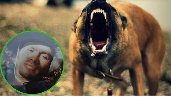 Abuelita muere en su chacra tras ser atacada por perros | VIDEO