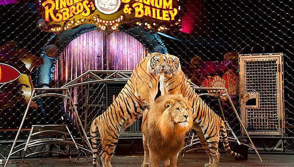 Animales: Circo Ringling cierra tras 146 años por lucha de animalistas