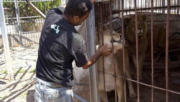 Luis Castañeda: Animales del Parque de las Leyendas están gordos