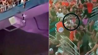 Estados Unidos: Salvan a un gato de una caída de 20 metros en un estadio de Florida