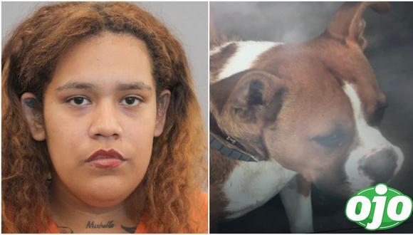 Mujer le disparó a un perro pero hirió a su hijo de un balazo. Foto: (redes sociales)