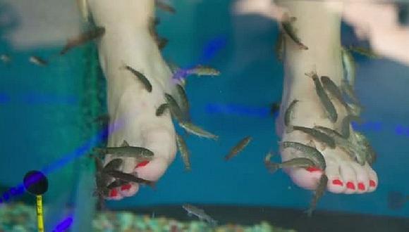Se hizo pedicure con peces y terminó perdiendo todos los dedos de su pie