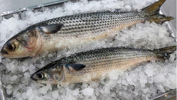 5 mitos del consumo de pescado que debes conocer