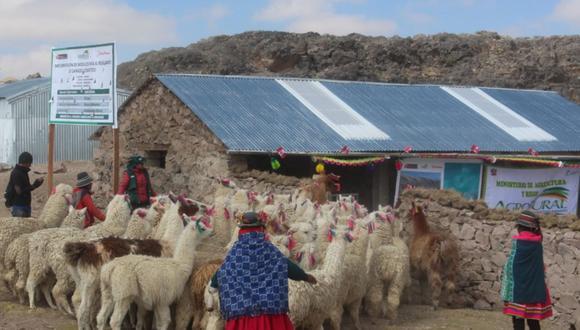 Agro Rural: los ganaderos deben comunicar a las autoridades locales para que hagan la supervisión correspondiente. (Foto: Agro Rural)