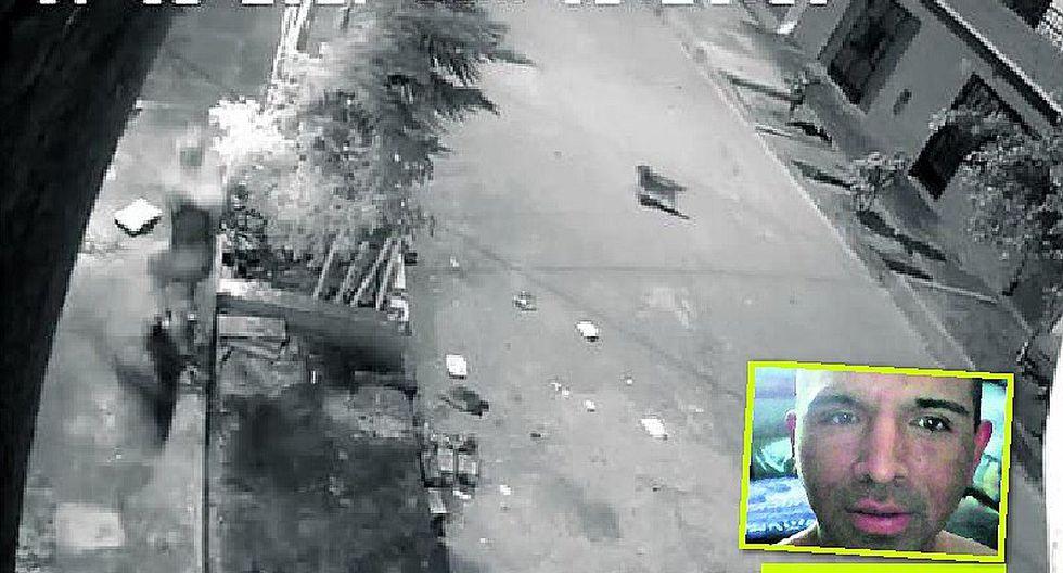 """Carabayllo: """"gato techero"""" es el terror de sus vecinos"""
