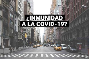 COVID-19: inmunidad a virus podría desaparecer rápidamente, afirma estudio