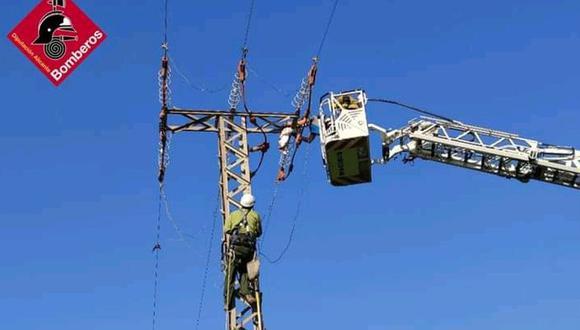 Valerosos bomberos suben y salvan a un águila atrapada en lo alto de una torre de electricidad, en España.