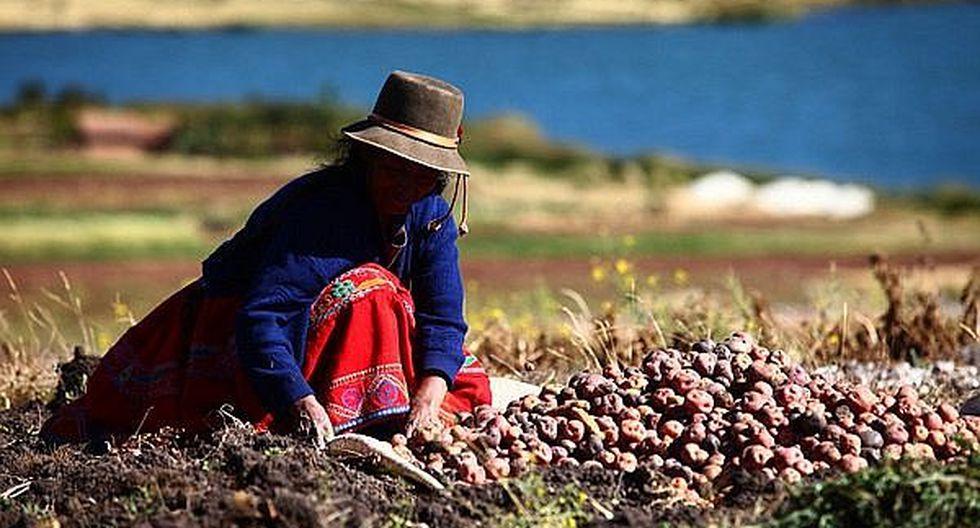 Hoy se celebra el Día del Campesino
