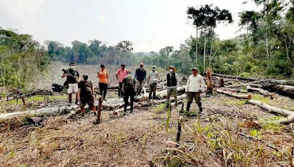 San Martín: Detectan que más de seis hectáreas de bosques fueron deforestadas para actividades agrícolas (Foto: Ministerio Público)
