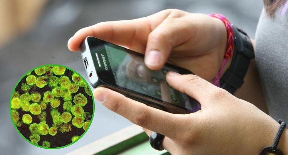Pantalla de celular podría estar más sucio que un inodoro y brindan técnicas para limpiarlo