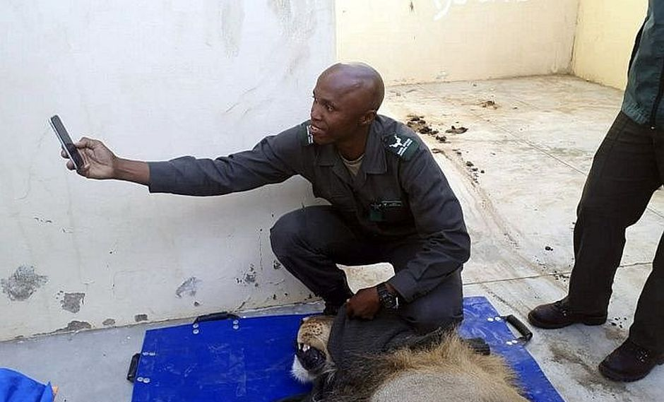 León que llevaba prófugo un mes va preso y policías se toman fotos con él