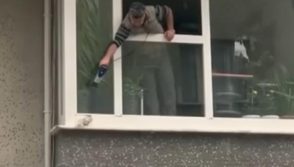 Este hombre salió por su ventana para calentar a un a paloma que estaba muriendo de frio por la lluvia (Foto: TV100)