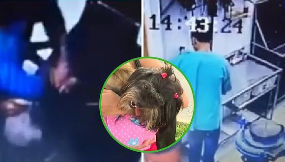 Llevó a su perrita a veterinaria en Surquillo y extranjero la maltrata (VIDEO)